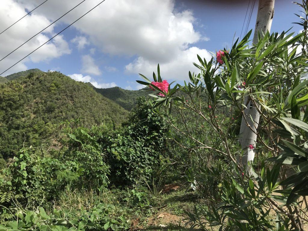 Die Berge der Sierra Maestra